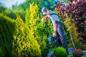 landscaping Beaumont Hills